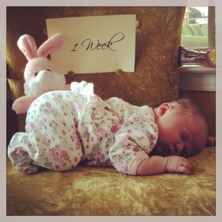 """Before baby arrives, print signs for weeks 1-13 and months 1-12, and a 1 year old sign. Use a scripty font for girls or a blocky font for boys. Pick a place or item to take the baby's photo with at each milestone so you can watch the baby grow. Be sure to include holiday items, bibs, outfits, ect. to mark special occasions along the way. Take a photo every week for the first 3 months, then monthly until 1 year. Makes a neat """"Watch me grow!"""" page in baby's scrapbook."""