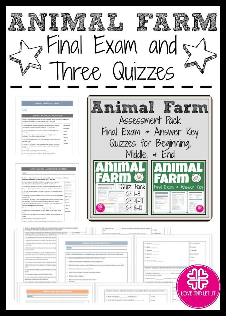 an analysis of the allegory in animal farm a novel by george orwell Download the free study guide and infographic for george orwell's novel animal farm here:   course hero's video stu.