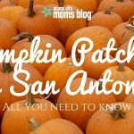 Pumpkin Patches in San Antonio: All You Need to Know
