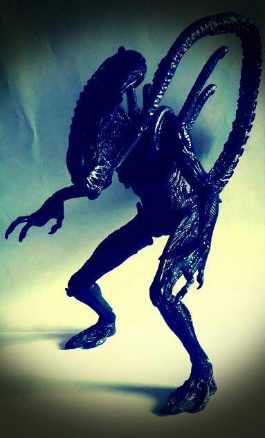 Alien Warrior, AvPR 2007