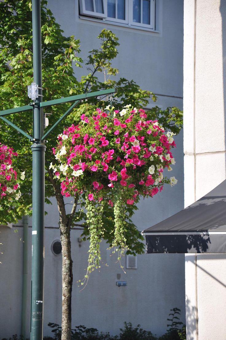 Cestos colgantes en farolas fachadas m stiles my for Farolas jardin
