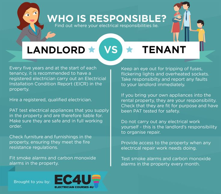infographic landlord responsibilities vs tenant responsibilities know where your electrical responsibilities lie - Responsibilities Of An Electrician
