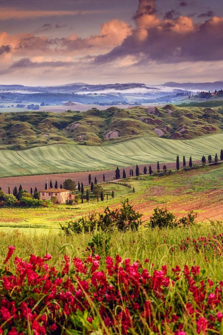 Tuscany in spring Val D'orcia Siena Find flights to here with https://www.lowcosthero.com #travel #europe #spring