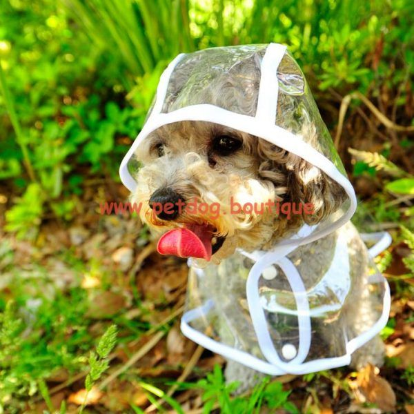 18 best dogs products images on Pinterest | Hunde, Haustiere und ...