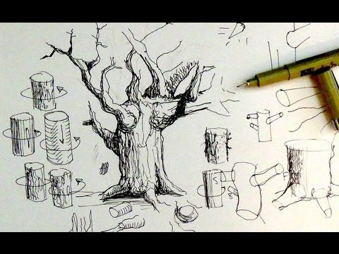 Pen  Ink Drawing Tutorials | How to draw tree trunks  Branches