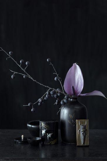 die besten 25 dahlien ideen auf pinterest dahlie dahlie und dahlien blumen. Black Bedroom Furniture Sets. Home Design Ideas