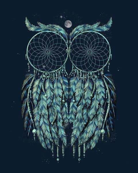 Owl Dreamcatcher... Love the mix blue midnight moon rise