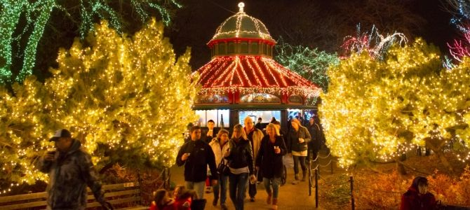 Chicago Events Calendar | Upcoming Zoo Events | Lincoln Park Zoo
