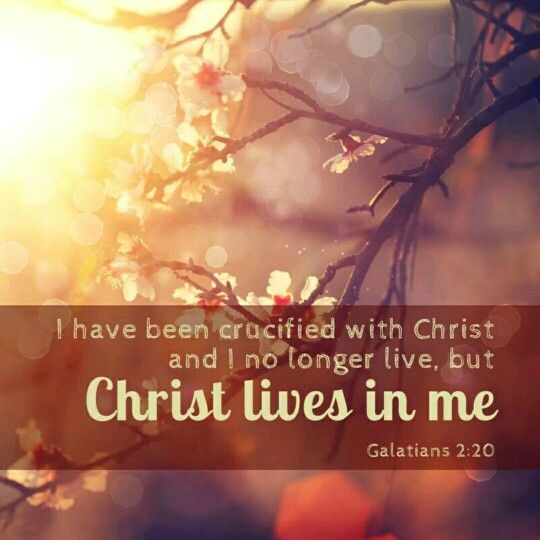 Those living the crucified life do not seek place or wealth, fame or high positions. Rather, they want to know God and to be where Jesus is. Only to know Christ - That is all ~ A.W.Tozer