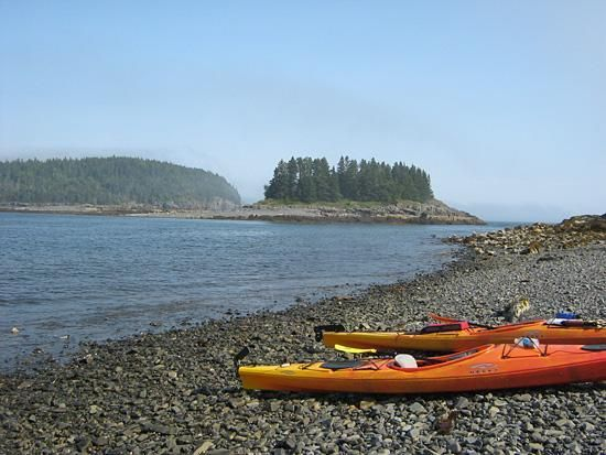 Kayaking in Bar Harbor with families and friends is a fantastic way to spend the day