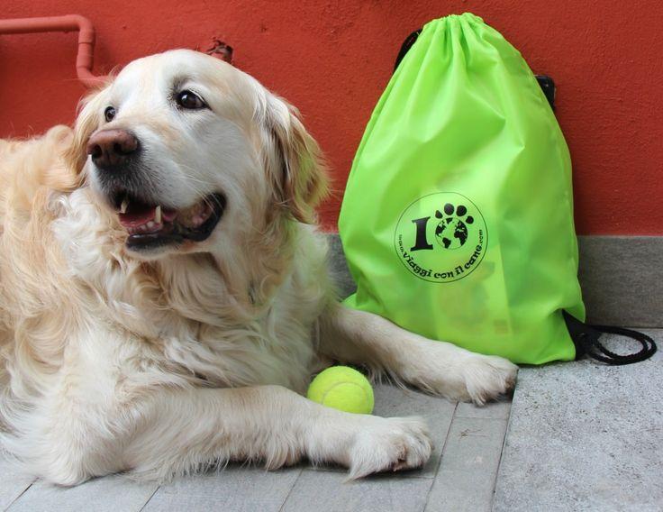 http://regalidacani.it/categoria-prodotto/regali-da-cani/guinzaglieria-e-accessori/zaini/ #valigiadacani #kitdacani #happy #dog #viaggiconilcane #puppy #dogfriendly #doglover #dogslife #goldenretriver
