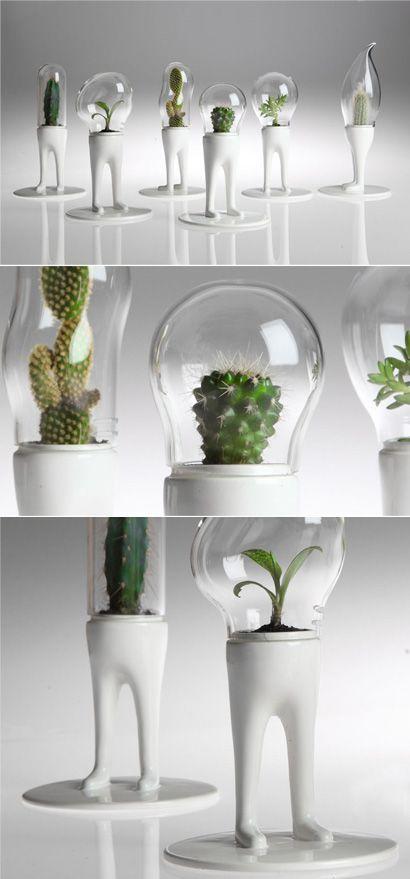 DOMSAI Diseño: Matteo Cibic Diseño para un ambiente contemporáneo único.El vidrio soplado con estilo orgánico mantiene su contenido a salvo de contacto exterior.  http://www.domsai.com/