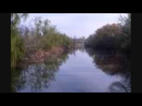 Celia Cruz: Tributo a los orishas