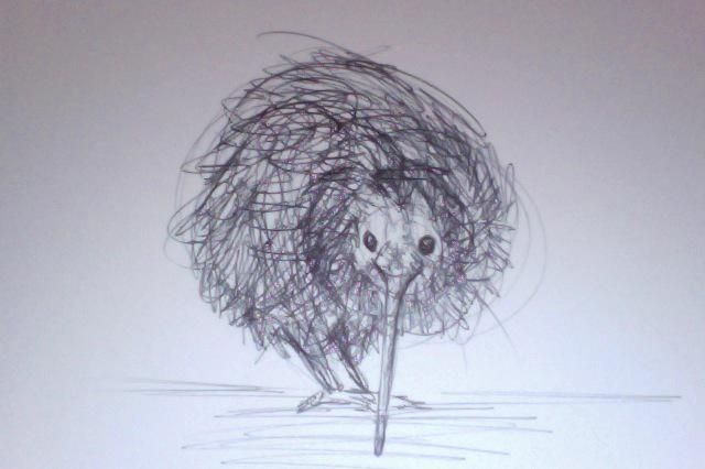#Sketch_Dailies Little Kiwi bird, you're so cute! :3 #feelingpatriotic Jaime Quinn art drawing kiwi sketch