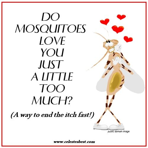 Allergic Reaction To Mosquito Bites - The Secret To Stopping The Itch