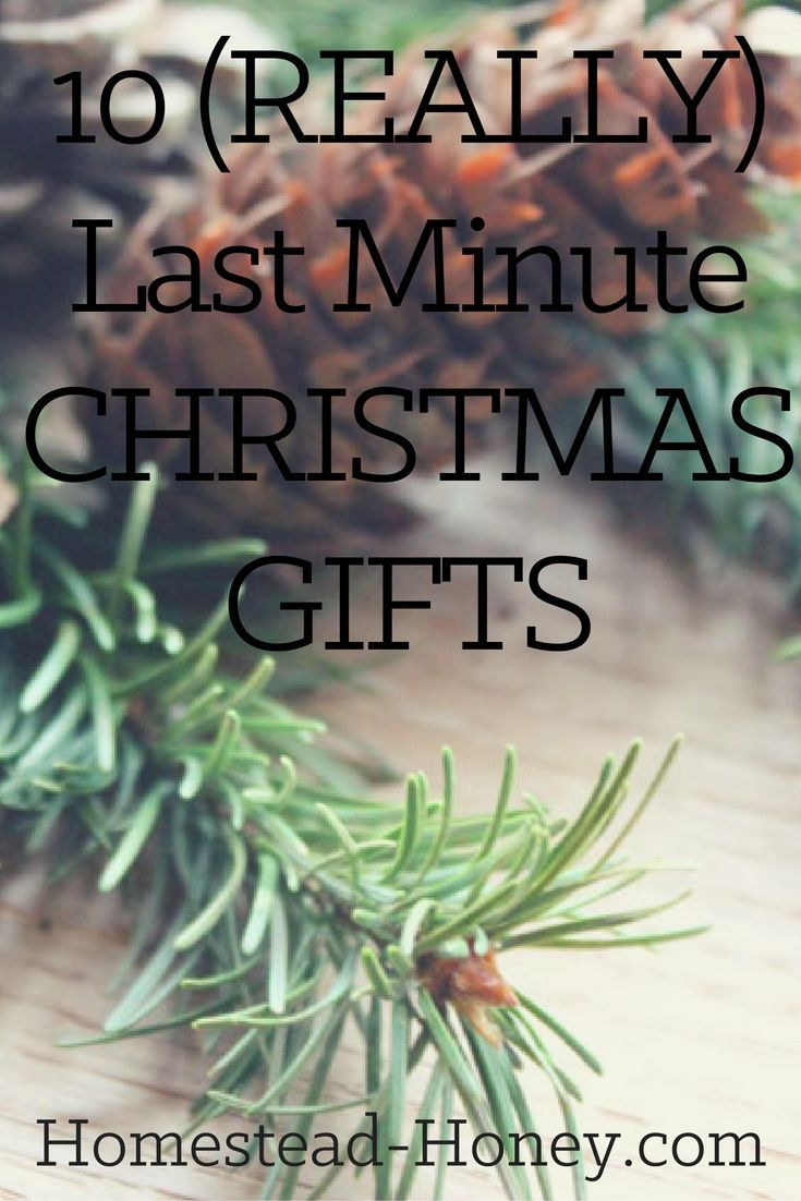Searching for a last minute christmas gift for a special homesteader? Here are 10 ideas for homemade gifts that can be made in less than an hour, but are still special and meaningful. | Homestead Honey