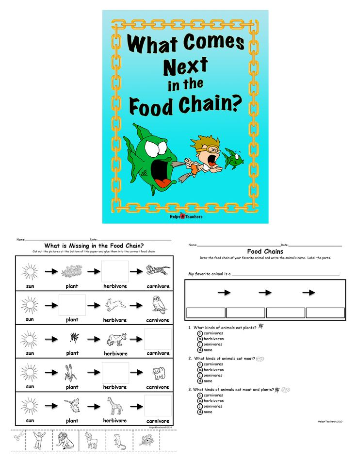 short essay on food chain book review the modest proposal by janathan swift the modest