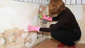Ein feuchter Keller muss nicht zwangsläufig teuer saniert werden. (Quelle: imago/Ralph Peters)