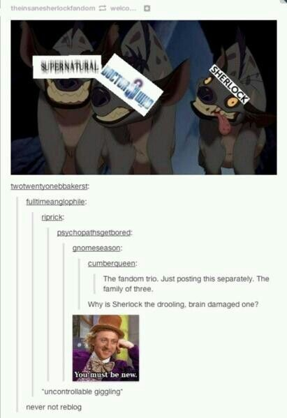 Superwholock - This will never get old, and is one of the main reasons I started watching Doctor Who and Supernatural.  The Holy Trinity of Fandoms.