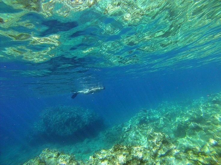 Zante blue sea snorkeling
