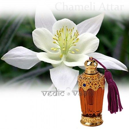 Chameli Attar, Chameli Attar offered is prepared from Jasmine Grandiflorum flowers, which are one of the most versatile flowers and have lovely floral smell. The derived attar has in it aphrodisiac properties that helps in increasing vitality as well as creates strong protective energy against disturbing influences. Further, this attar is also used in headaches as well as for getting relief from heavy head feeling. The attar is also used in water that is used for worshipping Lord Krishna.