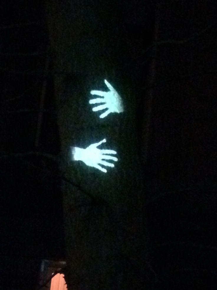 Tree hug , Amsterdam light festival