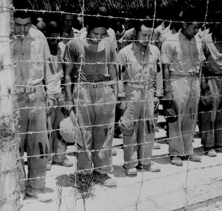 Japanese POWs at Guam bowed their heads after hearing Emperor Showa's surrender announcement 15 August 1945.