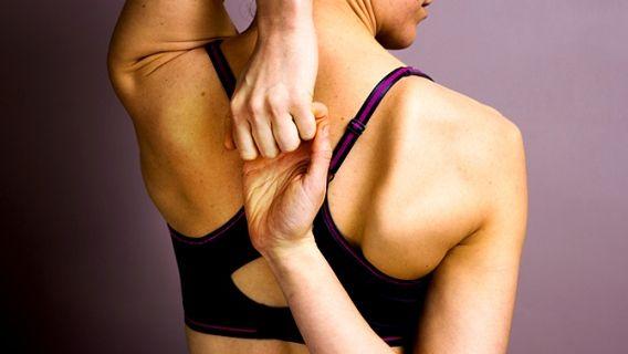 Tels les abdominaux et les fessiers, les bras sont une partie du corps que l'on souhaite voir musclé tout en restant l'air naturel.  Voici trois exercices pour le haut du corps qui vous permettront de tonifier vos bras en douceur, en priorisant la région de l'arrière du bras (les triceps).
