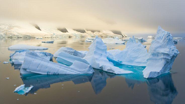 Saranno resi noti oggi da Greenpeace i risultati di un sondaggio sul futuro dell'Artico, condotto dalla società canadese RIWI in 30 Paesi, tra cui l'Itali