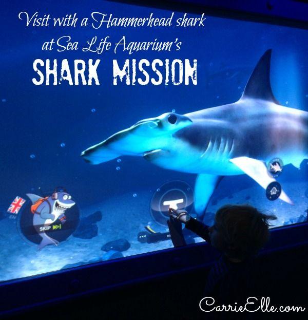 006 New at Sea Life Aquarium Shark Mission! Dallas/Fort