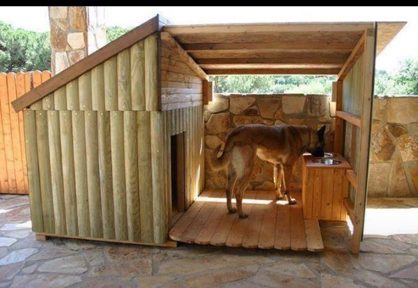 Cool Dog Houses Imgkid Com The Image Kid Has It Interiors Inside Ideas Interiors design about Everything [magnanprojects.com]