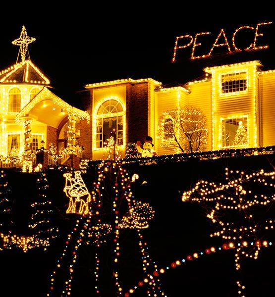 1040 Best Images About Lights Of Christmas On Pinterest