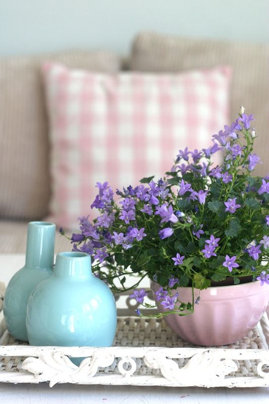 Pink Blue vases with floral plant in a pretty pink coffee bowl Fill Your Home With Flowers