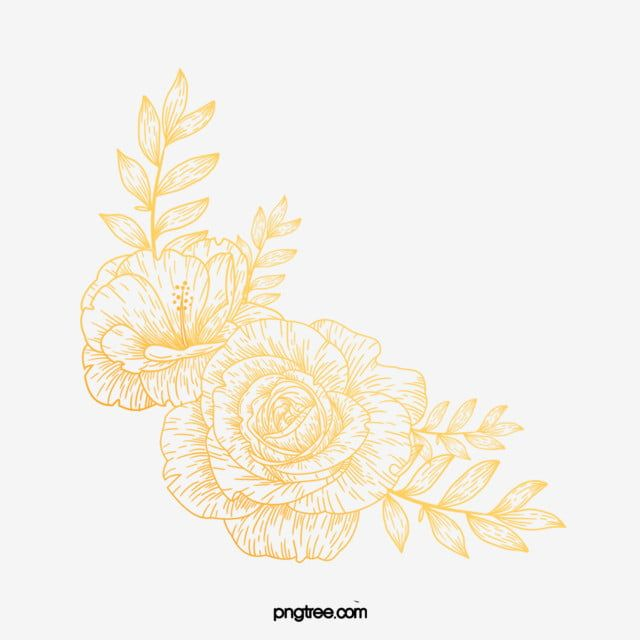 Hand Drawn Golden Line Flower Golden Flowers And Plants Rose Png Transparent Clipart Image And Psd File For Free Download How To Draw Hands Line Flower Flower Clipart
