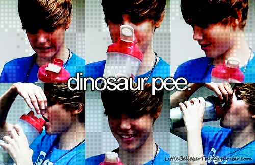 only a belieber will understand. Like if you are one of those