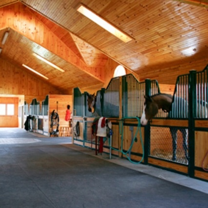 Great Amazing Stable, Just Elegant.