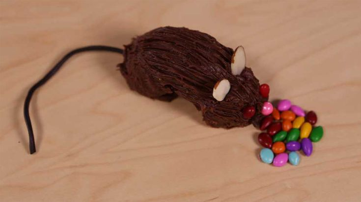 These chocolate doughnut rats are as tasty as they are creepy. Whip up a bunch for a fun Halloween party snack.                 Originally published in the October 2014 issue of FamilyFun magazine.