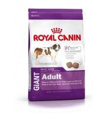 Royal Canin Perros Breed Nutrition  La marca Royal Canin propone una alimentación ajustada según la edad, el nivel de actividad, la raza o las sensibilidades específicas de tu perro. Si tienes une perro sensible a la alimentación, te recomendamos la gama Royal Canin Sensitive. Gracias a la gama Royal Canin breed, podrás conseguir online la comida adecuada para la raza de tu perro. Con Royal Canin Breed Health Nutrition, encuentra fácilmente el pienso para tu perro.