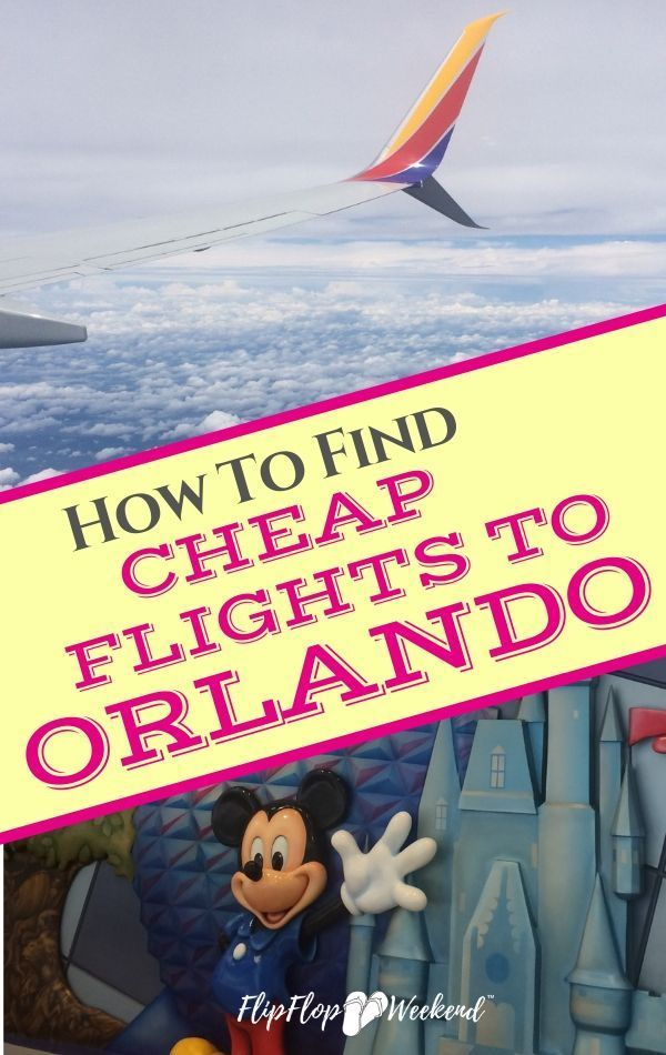 Save Your Money! How To Find Cheap Flights To Orlando   Florida vacation,  Find cheap flights, Florida travel