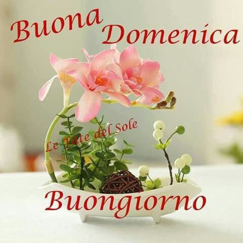 17 Best Images About Buona Domenica On Pinterest Search IOS And Happy Sunday