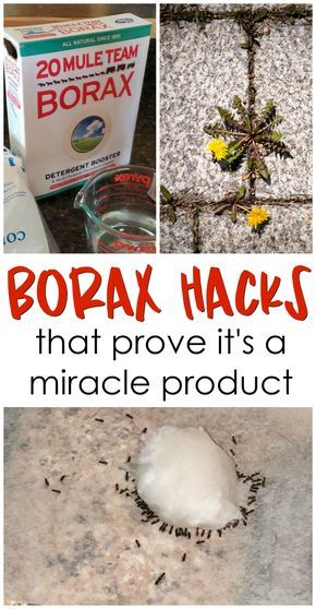 9afd3ca7c6b942f9785d356be5cf9535 11 borax hacks that prove it's a miracle product! Borax uses, benefits to we...