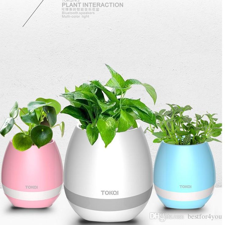 Creatives Tokqi Touch Wireless Bluetooth Flowerpot Mini Subwoofer Speaker with LED Home Smart Plant Office Mp3 Music Player Pot Music Pot Cute Bluetooth Speaker Pot Bluetooth Speaker Online with $31.2/Piece on Bestfor4you's Store | DHgate.com