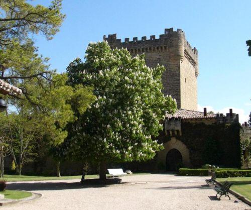 La Rioja es, en España, conocida como la tierra del vino. La gran calidad de sus productos, y la mezcla de modernidad y tradición en sus procesos de elabor