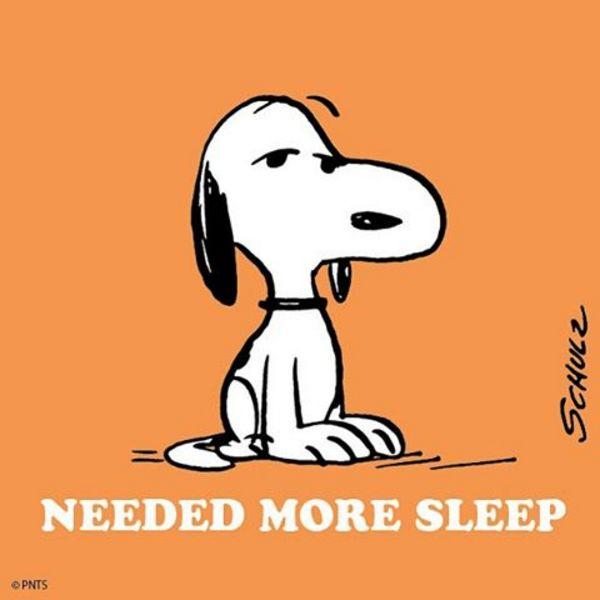 Standard Monday.