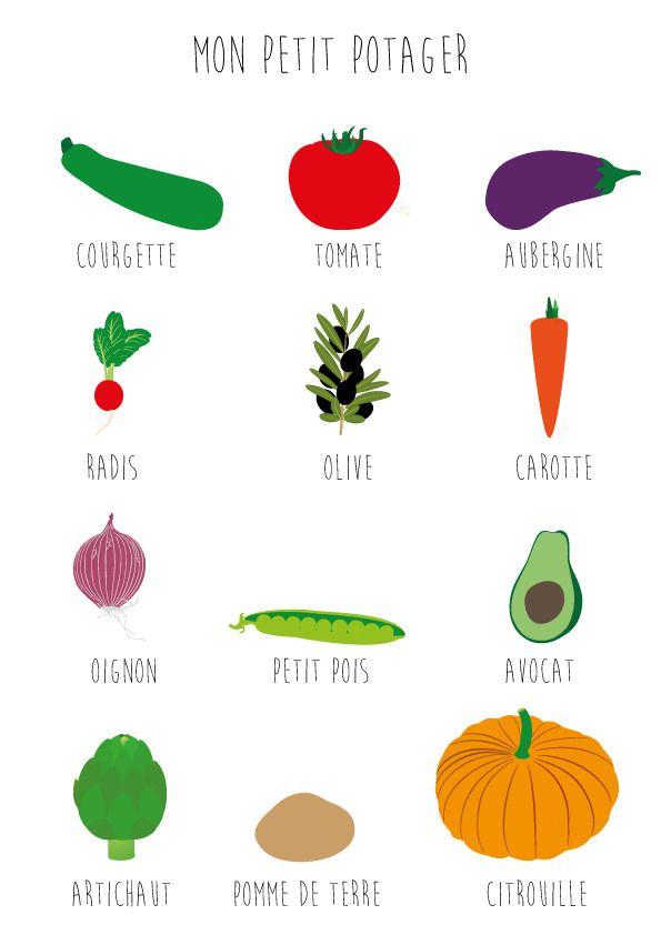 Affiche, Poster pour chambre pour apprendre aux enfants les légumes A4. : Chambre d'enfant, de bébé par affiche-chambre-enfant