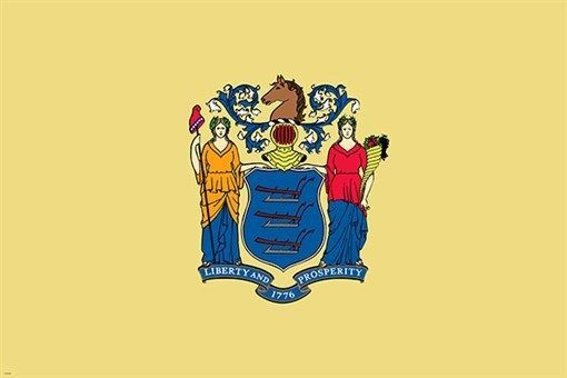 NEW JERSEY official flag poster COLLECTORS political SYMBOLIC historic 24X36