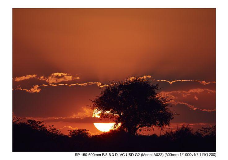 Amazon.co.jp: TAMRON 超望遠ズームレンズ SP 150-600mm F5-6.3 Di VC USD G2 キヤノン用 フルサイズ対応 A022E: カメラ #レンズ #写真