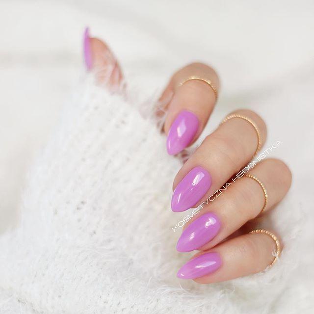 semilac french lilac - Szukaj w Google