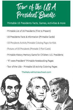 2037 best diy montessori activities images on pinterest tour of the usa printable presidents bundle fandeluxe Images