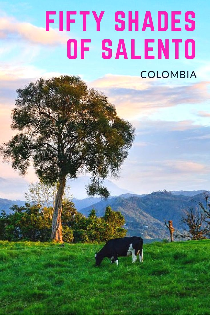 Salento, Colombia Photo Tour: The little town of Salento in Colombia and the surrounding area is downright otherworldly. Come with us on a photo tour and explore the beauty and wonder of Salento.